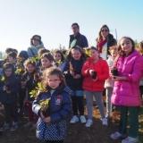 Crianças plantam cerca de 600 carvalhos alvarinho em Molelos