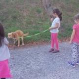Município de Tondela sensibiliza crianças para cuidados a ter com animais