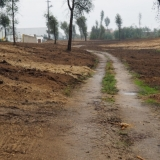 Município de Tondela executa faixas de gestão do combustível na ZIM da Adiça