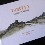 Lançamento do livro Tondela – Caderno de Viagens